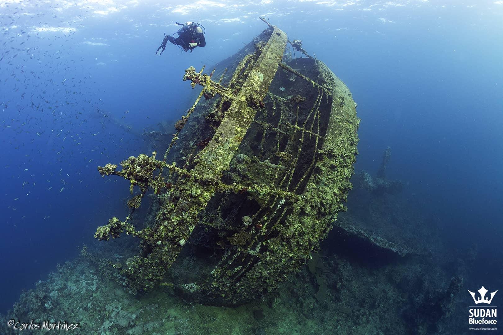 Scuba Diving Umbria Wreck in Sudan
