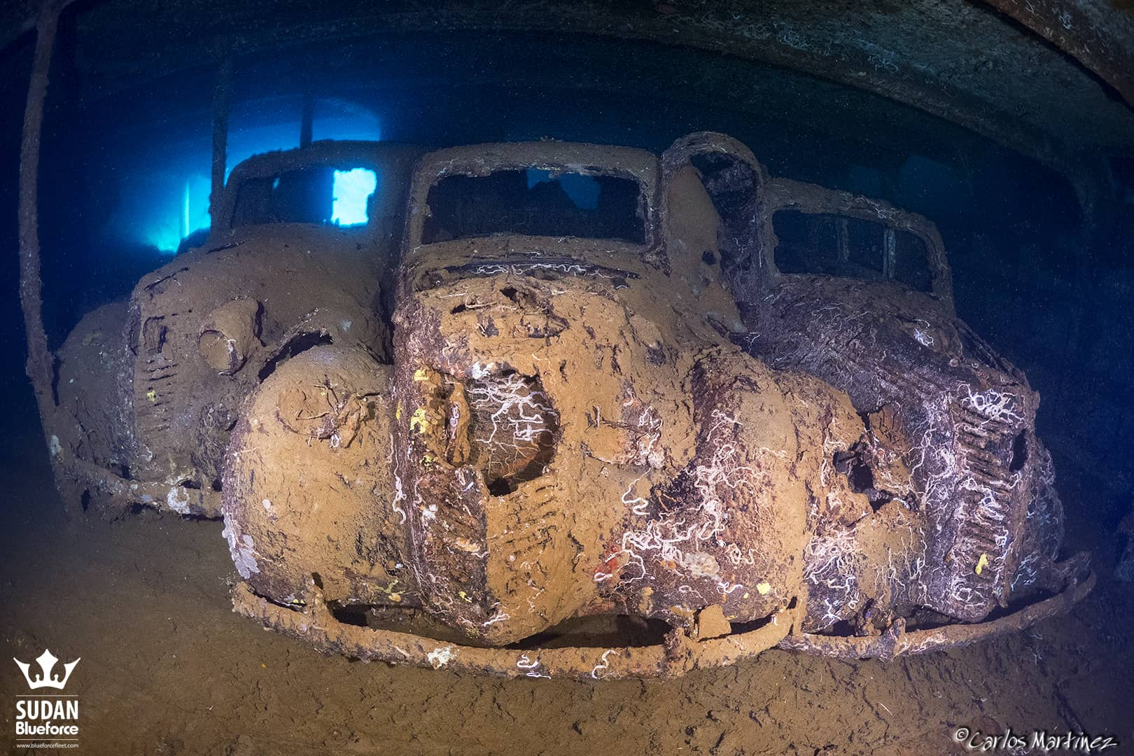 Sudan Diving Umbria Wreck Fiat Lunga