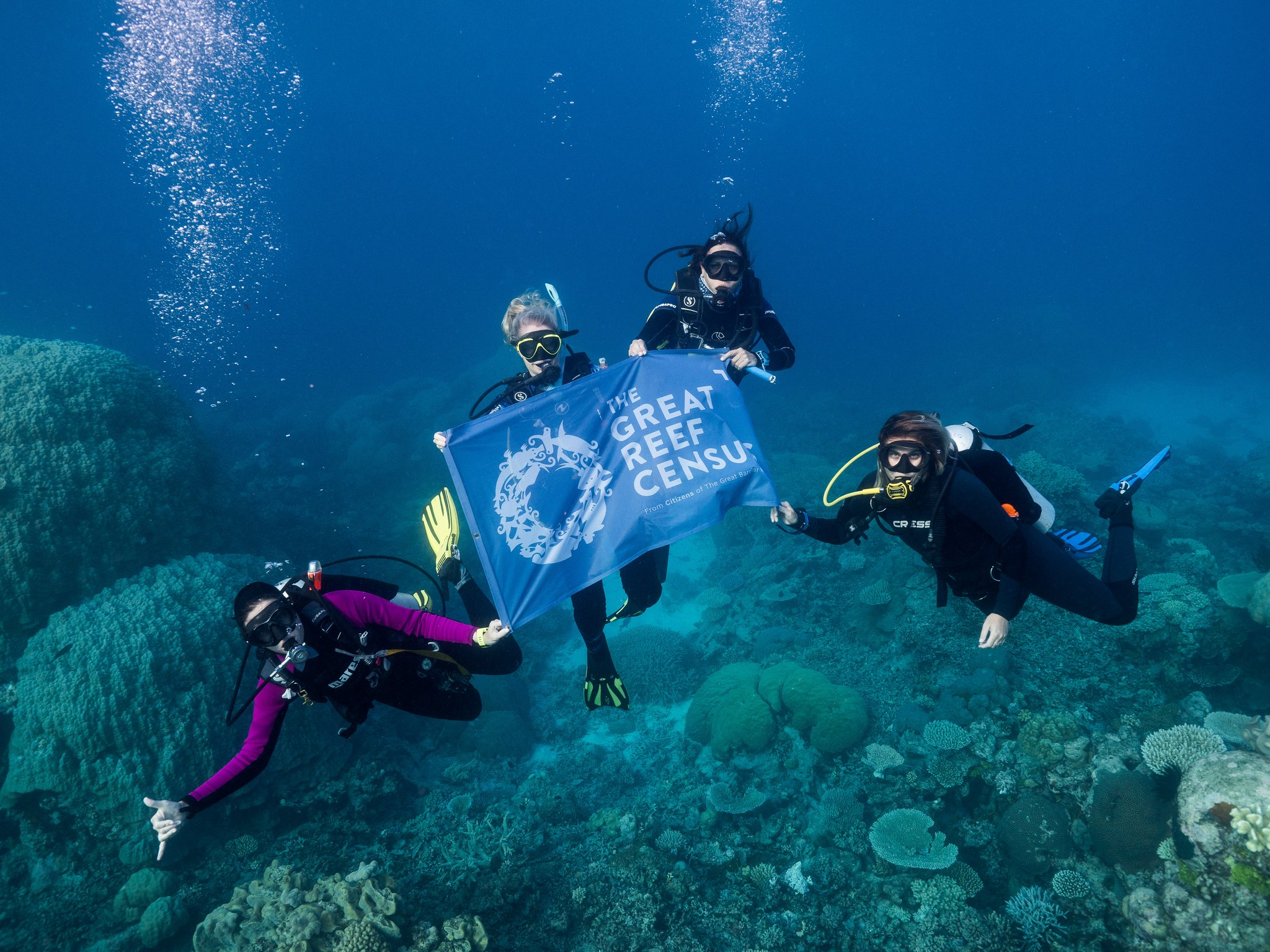 Divers hold Great Reef Census banner during survey expedition on Spirit of Freedom. Credit: Grumpy Turtle Creative