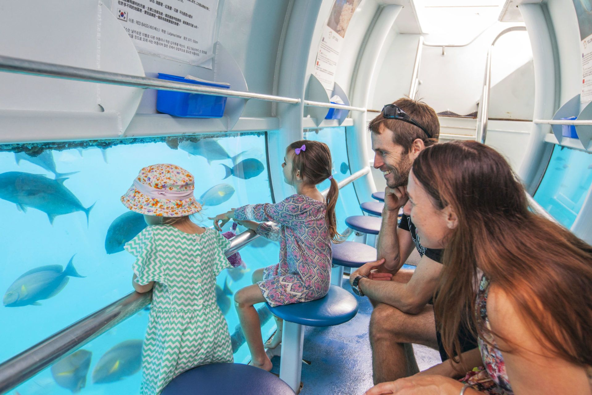 Sunlover Reef Cruises Family Tours