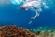 Amazing Raja Ampat Holiday Packages