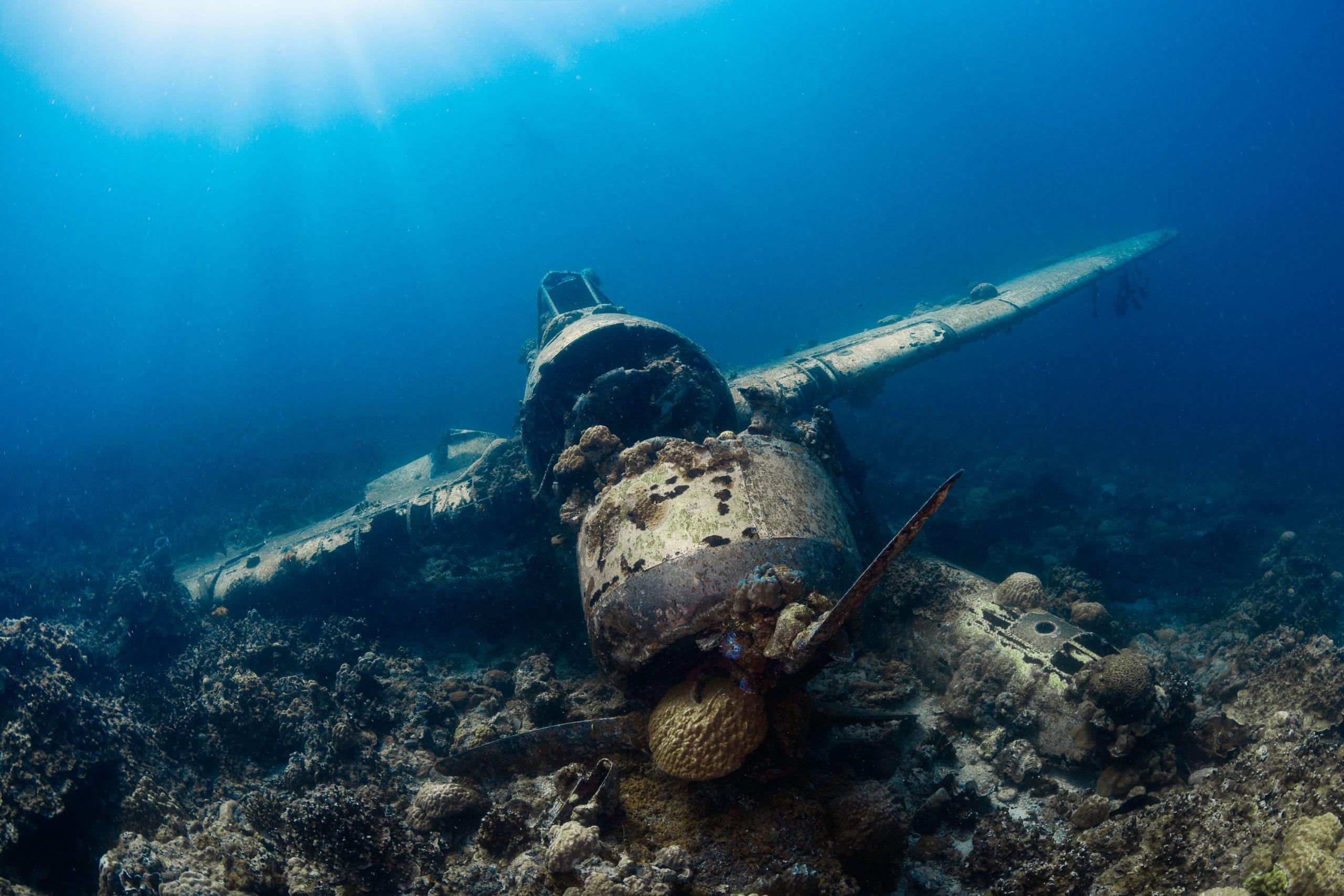 Amazing P47 WW2 Plane Wreck