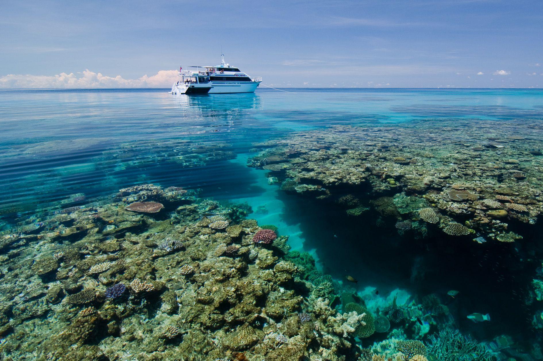 Great barrier Reef Liveaboard Adventure