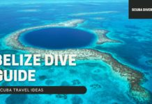 Belize Dive Guide