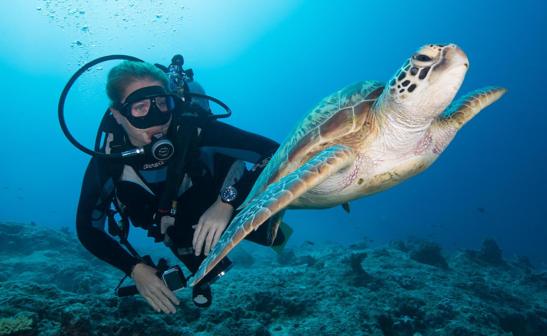 Unique Dreamtime Dive and Snorkel
