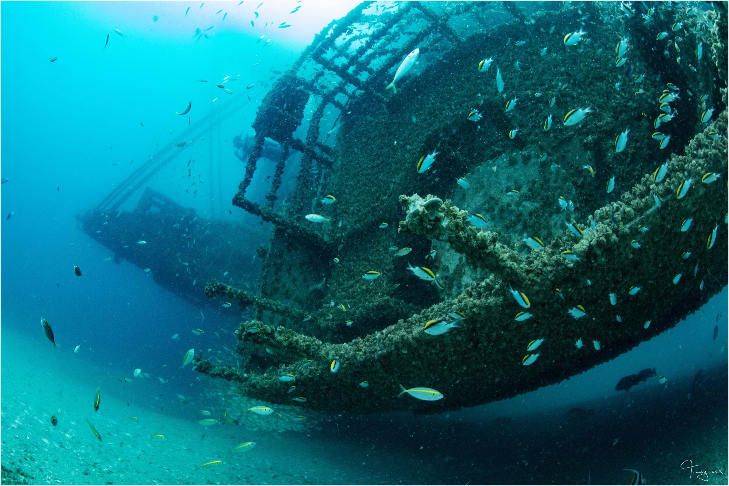 Queensland's Best Wrecks