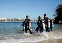 5 Reasons You Should Dive Incredible New South Wales Year-Round