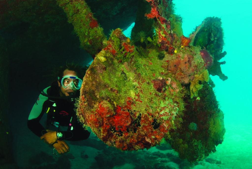 wreck diving 19