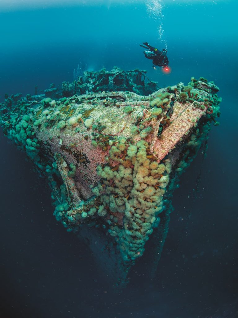 Diving Newfoundland 2