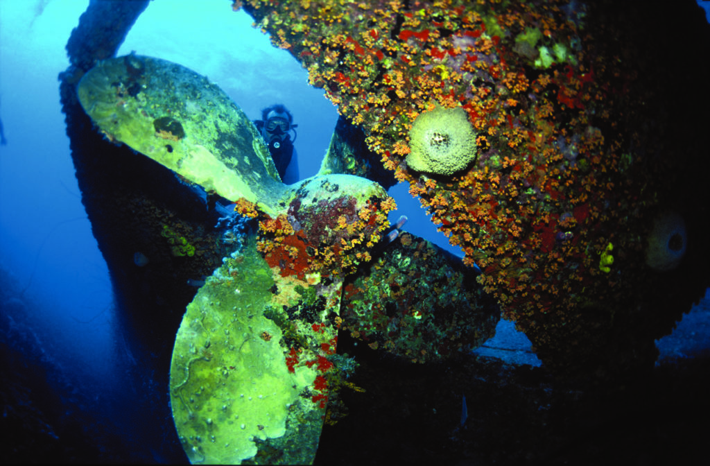 wreck diving 7