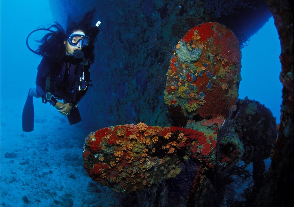 wreck diving 12