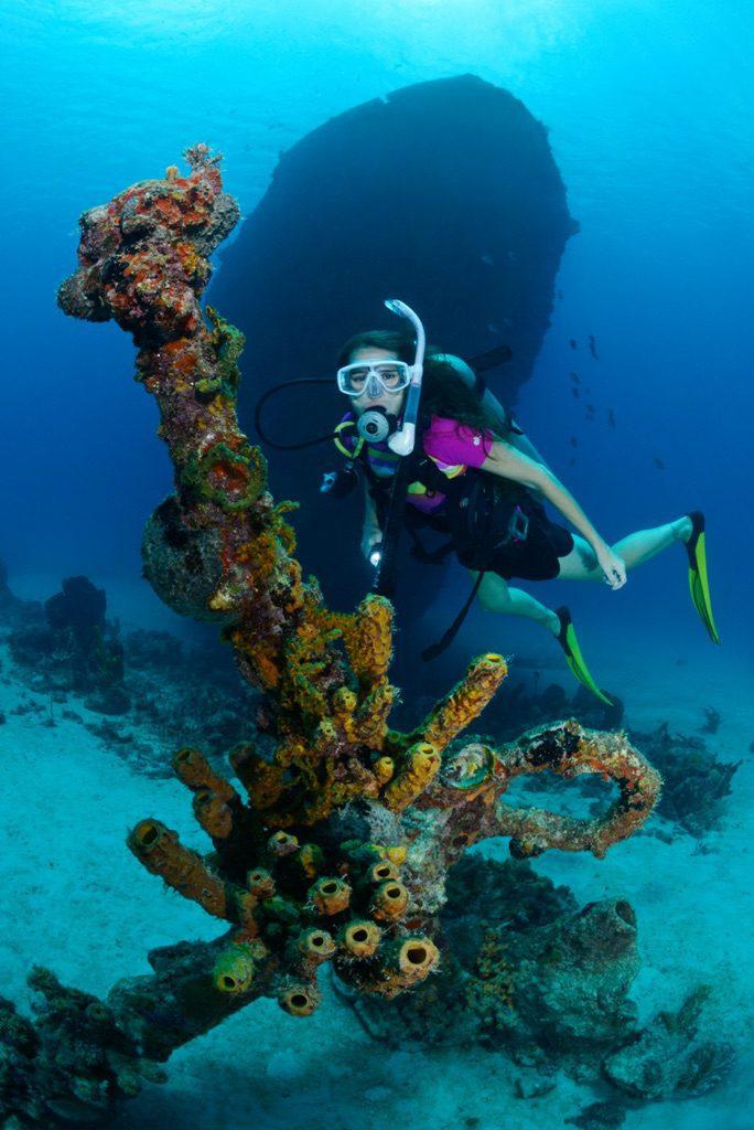 wreck diving 11