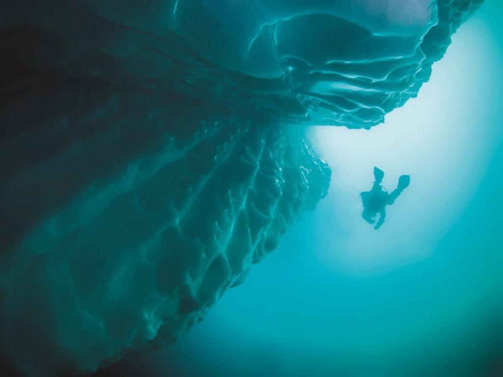 Diving Newfoundland 7