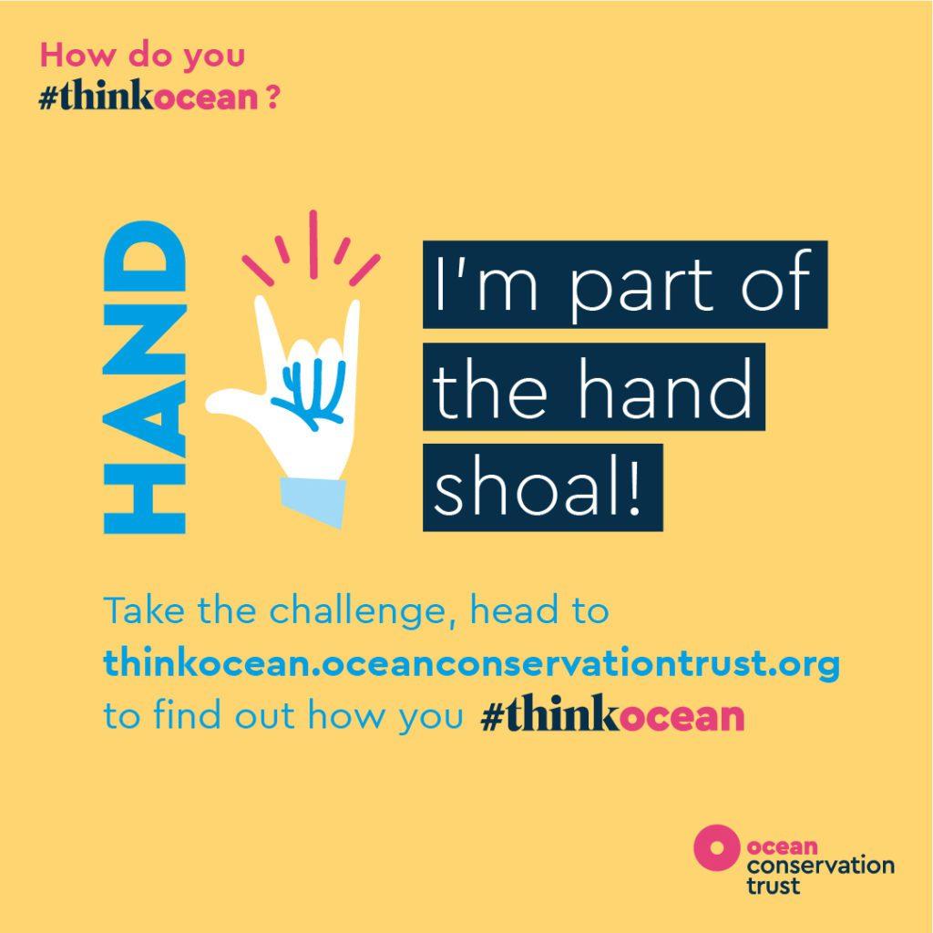 Ocean Conservation Trust 3