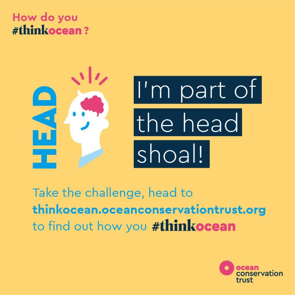 Ocean Conservation Trust 1