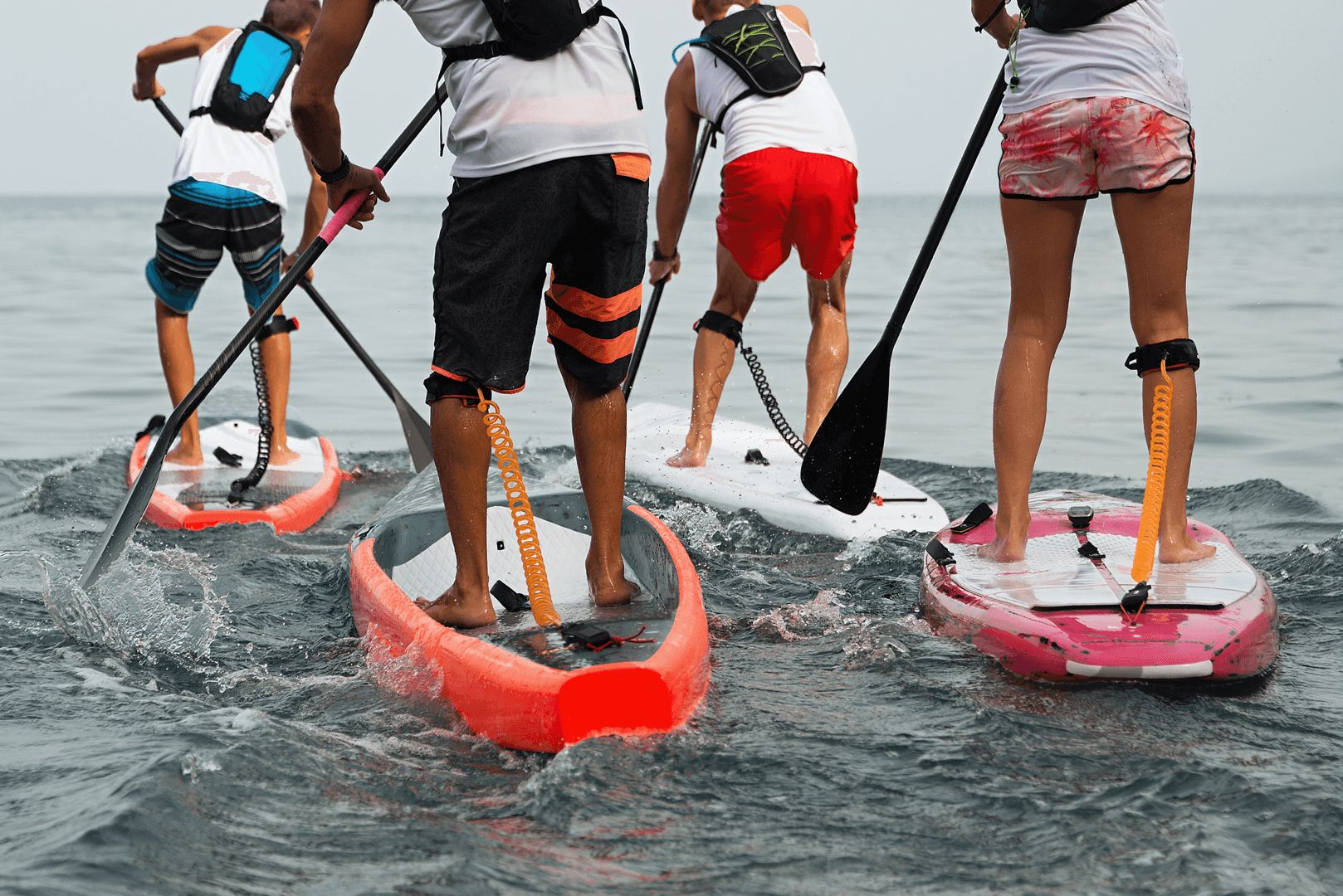 Go Diving Show Paddle Board