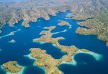 Thrilling Currents of Raja Ampat