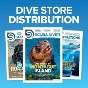 Dive Store Distribution