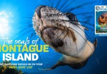 Scuba Diver ANZ Issue 38 Out Now