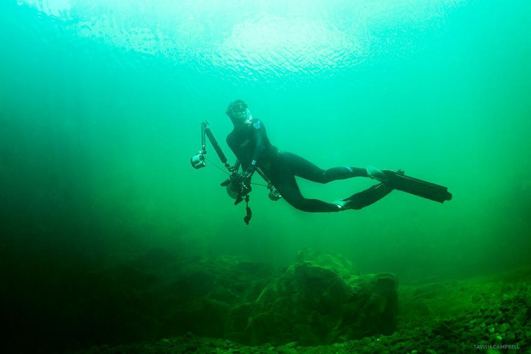 Underwater Photographer of the Week April Bencze