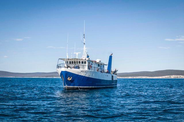 Vessel Rodney Fox