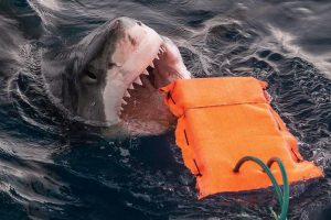 Shark Proof Wetsuit Material